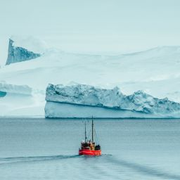 Sightseeing boat in Disko Bay approaching icebergs