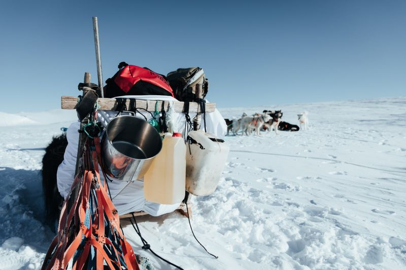 The truly authentic way of exploring Greenland