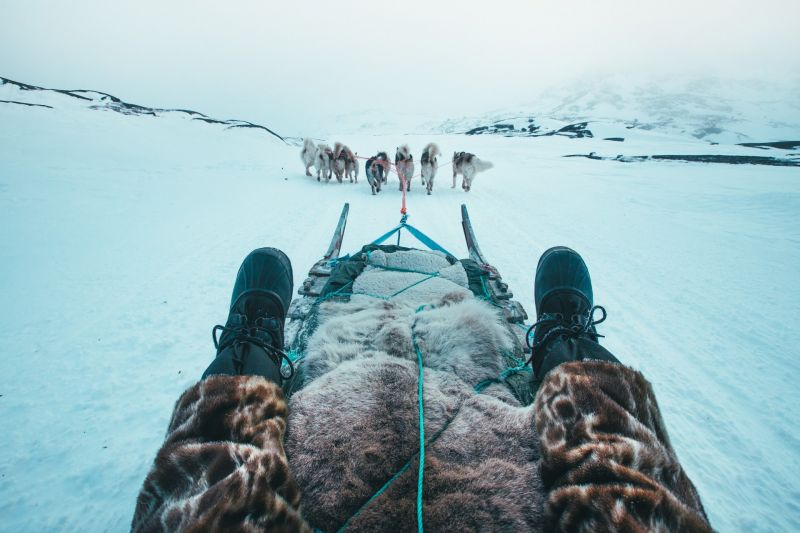 Heading out of Ilulissat by dog sled