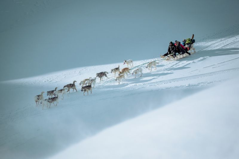 Dog sledding downhill in East Greenland