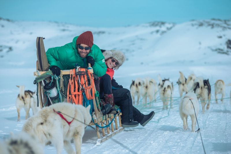 Fun with the Greenland dogs
